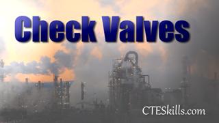 IND-PTV - Check Valves