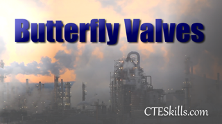 IND-PTV - Butterfly Valves