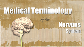 HST-MT- Medical Terminology of the Nervous System