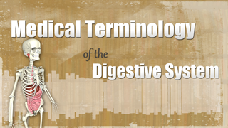 HST-MT - Medical Terminology of the Digestive System