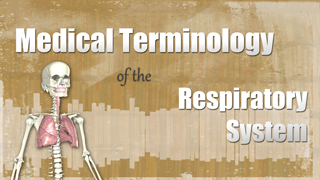 HST-MT -  Medical Terminology of the Respiratory System