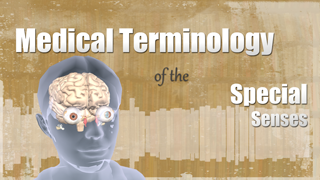 HST-MT-Medical Terminology of the Special Senses