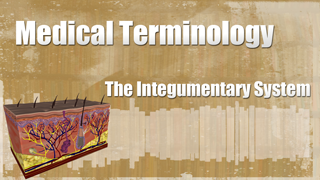 HST-MT - Medical Terminology of the Integumentary System