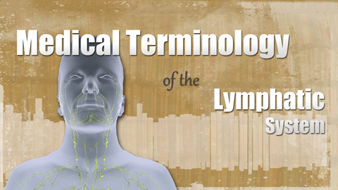 HST-MT - Medical Terminology of the Lymphatic System